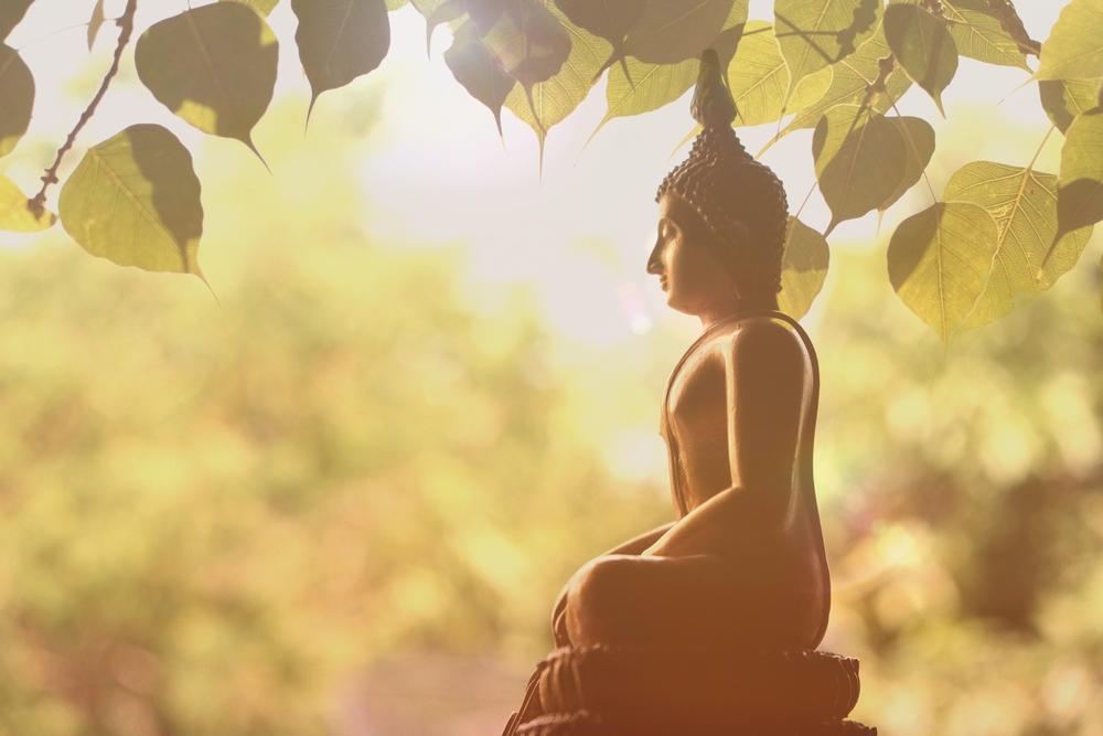 Mindfulness budismo